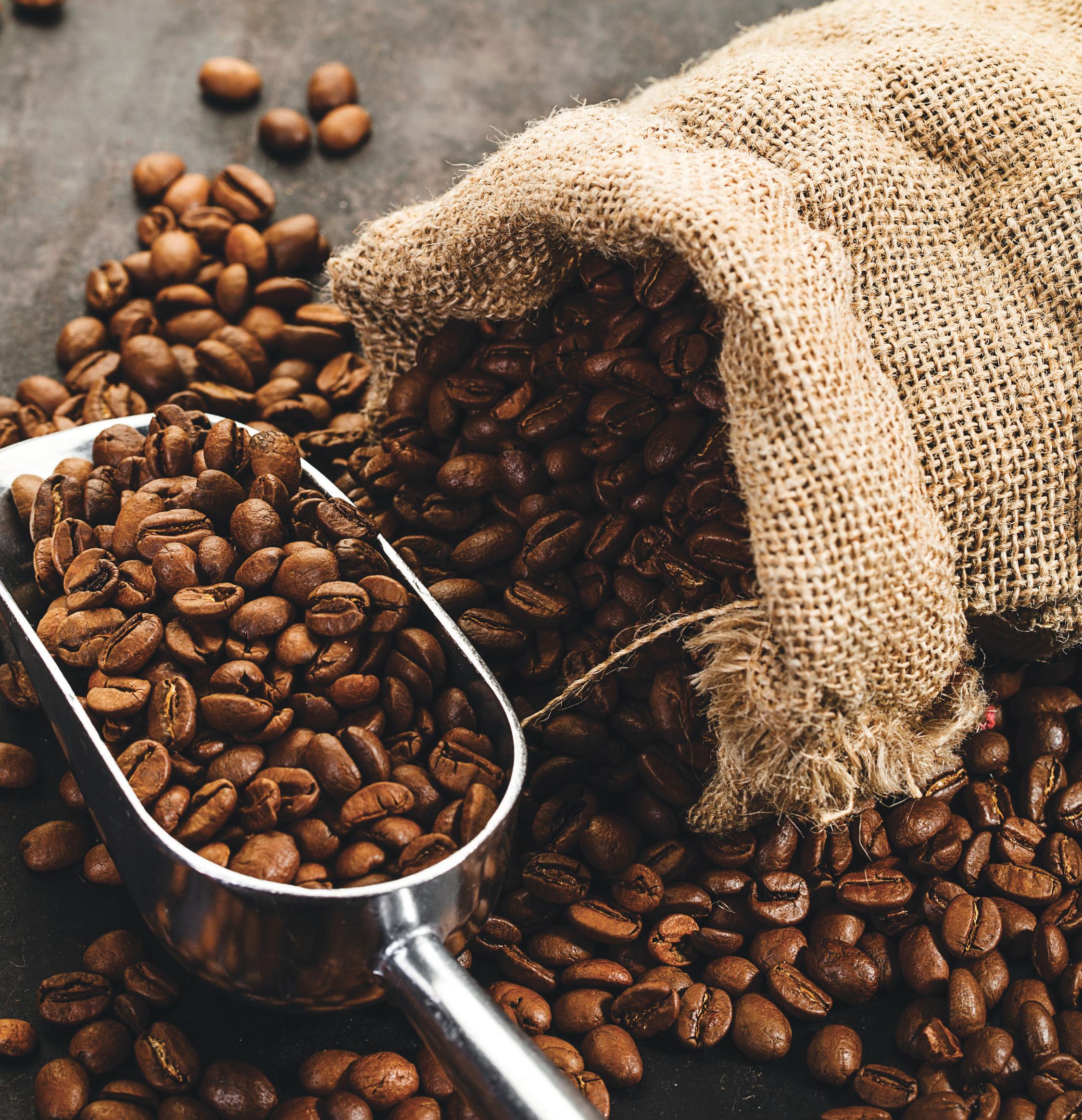 커피가 어떻게 발견되어 발전해왔는지, 그리고 역사 속에서 어떻게 하나의 문화로 꽃피워왔는지를 담고 있다.